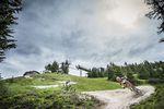 bikepark-wagrain_trail-hard-rock_foto-bergbahnen-wagrain_by_stefan_voitl