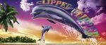 clipper flipper