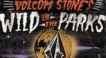 Volcom Wild in the Parks 2013