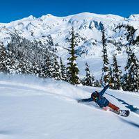 never summer, snowboards, never summer snow