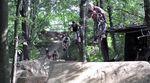 Die DRK Crew aus dem Mellowpark hat sich im Sommer 2014 aufgemacht, um einige der besten Trailsspots Ostdeutschlands zu besuchen. Mehr dazu in diesem Video.