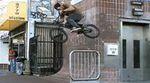 Eddie Cleveland Fit Bike Co. Stay Fit