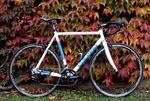 Das De Rosa Milanino Training ist ein sehr gutes Alu-Bike. Es ist 2015, genauso wie im letzten Jahr, mit einer Campagnolo Veloce verfügbar. Wer sich sein Bike selbst zusammenstellen möchte, kann auch das Rahmenset kaufen.