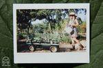Arbeit auf einer Farm Foto: idletheorybus.com