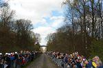 Paris Roubaix 10 Pic Sirotti .jpg