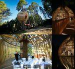 Yellow-Treehouse-Restaurant-copy-1020x941