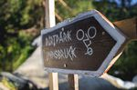 Bei 36 grad Aussentemperatur riefen die Locals vom Dirtpark Innsbruck zur 20inch Trophy