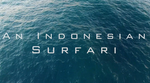 An Indonesian Surfari