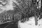 Der Winter ist nicht die Zeit für Entdeckungsreisen: Wähle dir bekannte Strecken und Straßen aus.