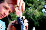 Shimano R785 hydraulic disc brake, bleed funnel, pic: Timothy John, ©Factory Media