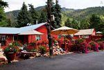 Amazing Mountain Shack Cabin Airbnb Travel Colorado Springs 1
