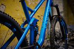 Canyon Strive CF 7.0 Race