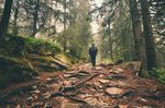 Traveler hiking through deep forest in the mountains - blurred motion