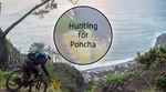 Sascha Bamberger - Hunting for Poncha