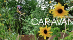 Caravan mit Cody Gessel