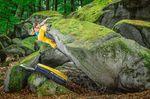 Moutainbike Ausgleichssport