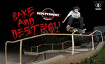 Bake & Destroy Baker Skateboards