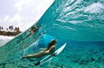 Surfer Female Surfing Duck Dive OceanSurfer Female Surfing Duck Dive Ocean