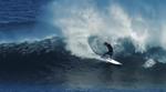 Jordy Smith surft zwischen den Haien