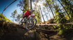 Downhill-Bike-Kauf-Tipps-2