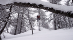 DPS Skis Shadow Campaign