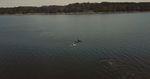 orca-washington