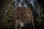Photo: Tree Hotel