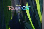 burton-tough-cat-snowboard-2015-2016-review-details-2