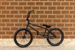 Wow, wow, wow: Kim Lea Müllers Rush von All In BMX