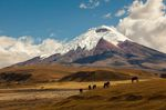 Mountaineering-Holiday-World-Guide-Expeditions-Cotopaxi-Ecuador-South-America.jpg