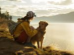 Girl with Golden Retriever on Mountain at Sunset by Lake