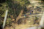 Pietermaritzburg DH Track