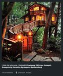 http---cdn.coresites.factorymedia.com-mpora_new-wp-content-uploads-2015-06-Instagram-tree-house-lamp-light