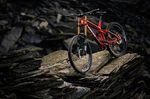 Trek Downhill Mountainbike