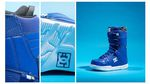 DC Phase Snowboard Boots 2015-2016