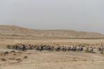 Die endlosen Weiten der Wüste machten die dritte Etappe des Giro d