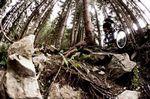 Bikepark_Leogang_1_by AleDiLullo