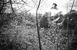 2014 / Daniel Treader / Mellowpark Trails: Es gibt fast nix Besseres, als einen Nachmittag mit den Atzen am eigenen Trails-Spot zu verbringen. Zuerst wird gemeinsam geschauffelt, dann wird entspannt ein bisschen gerollt und nach Sonnenuntergang sitzen alle am Lagerfeuer. Ich habe diesen Lifestyle über ein Jahrzehnt zelebriert und dieses Bild erinnert mich an diese unbeschwerten und wunderbaren Tage.
