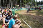 Die legendäre Fankurve in Ilmenau lief beim iXS German Downhill Cup 2016 wieder zu Bestform auf