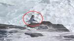 Riffe sind eine Gefahr beim Surfen in Westaustralien