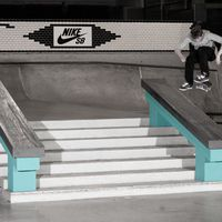 Michi von Fintel Nike SB Shelter Mantis