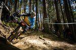 Fabien Barel Downhill Mountainbike Racer