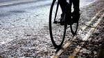Wet road, pine needles, pic: Timothy John, ©Factory Media