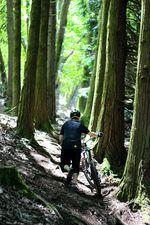 Location: WERIDE.pt, Lousa Trails in Portugal, Dark Forest; Rider: Sascha Matthies, er trägt das Jersey in Größe L