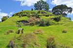 10 Best Things to Do on a Gap Year in New Zealand hobbiton lord of the rings
