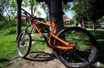 ion16-orange