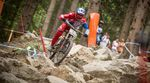 DH WC in Leogang 2015 / Rider @Aaron-Gwin Foto @Michael Marte