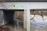 Locals only. Flusswellen sind nicht immer die friedlichste Location