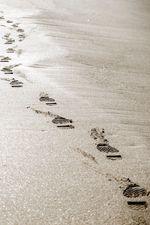 Traillaufschuhe für den Strand