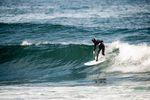 Surfer - Lib Tech